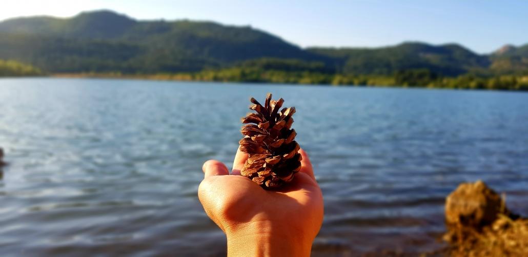 Tannenzapfen auf einer Hand und im Hintergrund ein See.